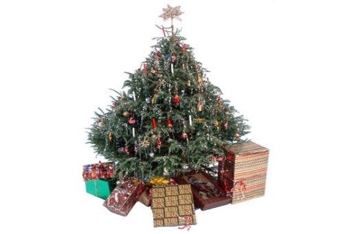 recycledxmastree